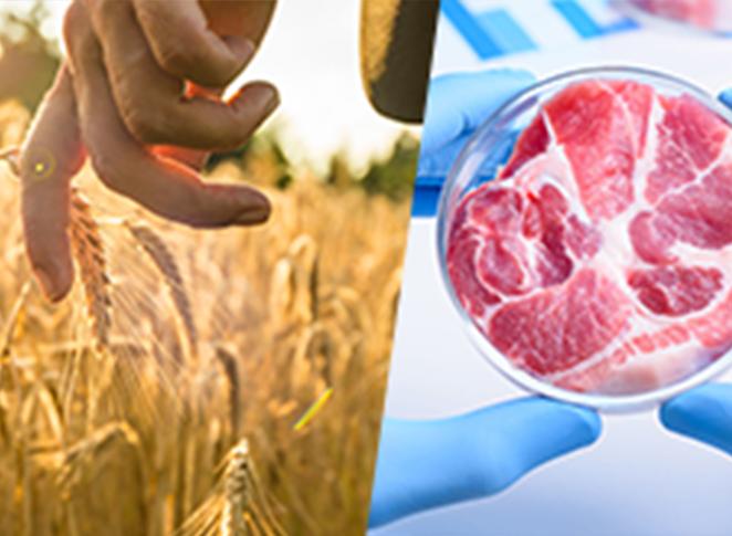Quel futur pour l'industrie agroalimentaire ?